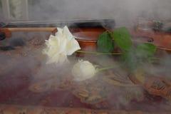 Skrzypcowe białe róże i dym zdjęcia stock