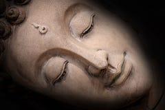 Skugga av den head Buddha Royaltyfri Fotografi