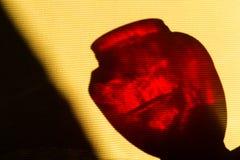 Skugga av det röda exponeringsglaset royaltyfri fotografi
