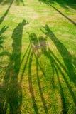 Skugga av en cyklist på gräs Royaltyfri Fotografi