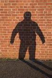 Skugga av en man på en tegelstenvägg Arkivbilder