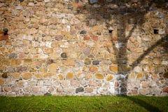 Skugga av ett träd på en vägg arkivbilder