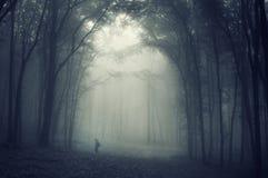Skugga av mannen som går ho en kuslig skog med dimma Arkivfoto