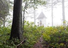 Skugga den ledande kupolen för kyrkan för kufskogkapellet, den Slovenien resanden Royaltyfria Foton
