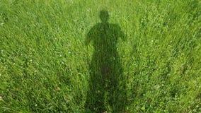 Skugga för grönt gräs Royaltyfri Fotografi