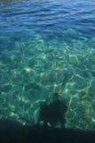 Skugga i havet Fotografering för Bildbyråer