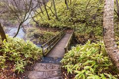 skugga i skog för att besöka Oyunumagawa den varma våren, Noboribetsu, Hokkaido, Japan Naturlig fotbrunnsortgränsmärke för besöka Arkivbilder