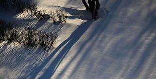 Skugga på snowen Fotografering för Bildbyråer