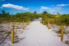 Skugga till stranden i Sanibel, Florida Arkivbild