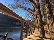 Skugga vid floden Arkivbild