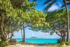 Skuggad bänk på en härlig strand Arkivfoto