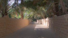 Skuggad gränd i den Al Ain oasen, royaltyfria foton