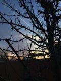 Skuggad himmel Royaltyfri Fotografi
