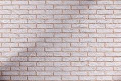 Skuggad tegelstenvägg Royaltyfria Bilder