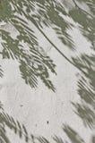Skuggan av sidorna på en vit vägg Fotografering för Bildbyråer