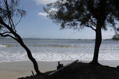 Skuggar på stranden Arkivfoton