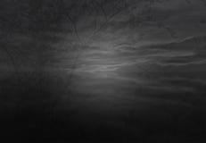 Skuggaträd i himlen Arkivbild