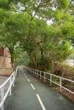 Skuggig gångbana med nya gröna träd och stålstång för bakgrund arkivfoton