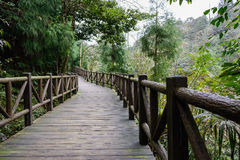 Skuggig planked footway med balustrader i träig berg arkivfoto