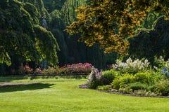 Skuggig trädgård arkivfoto