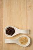 2 skuggor av ris Royaltyfri Bild