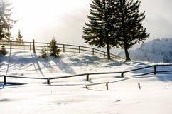 Skuggor av vintern Fotografering för Bildbyråer