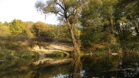 Skuggor och flod Royaltyfria Bilder