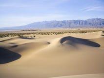 Skuggor på Death Valley dyn Arkivbild