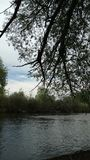Skuggor på floden Arkivfoto