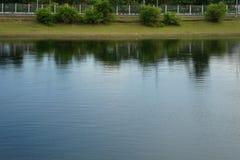 Skuggor reflekterar av kust av det gröna trädet och gräs arkivbild