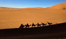 Skuggorna av husvagnen på den varma sanden av den sahara öknen arkivbild