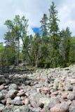 Skuleskogen National Park, Hoega Kusten, Sweden Royalty Free Stock Image