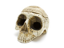 Skull. On a white background Royalty Free Stock Photography