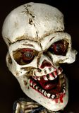 Skull. Photo of a Halloween Decoration / Skull Royalty Free Stock Photography