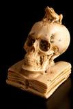 Skull. Allegoric sculpture of  student life Stock Photo