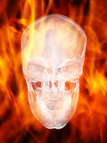 Skull. Glassy fire skull in fire flame Stock Photography