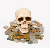 The skull Royalty Free Stock Image