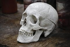 Skull. On the old table Royalty Free Stock Photography