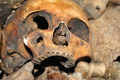 Skull. In the Paris Catacombs Stock Image