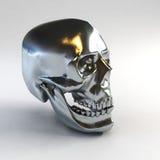 Skull 3d rendering. 3d model of human skull vector illustration