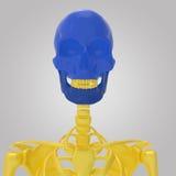 skull Fotografia de Stock