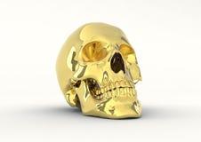 skull Imagens de Stock