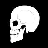 skull Imagens de Stock Royalty Free