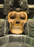 Skull. On an old building Royalty Free Stock Photography