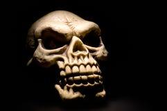 Skull. Close up shot of an Evil Skull stock image