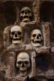 Skull. Old human skulls in old serbian monastery Royalty Free Stock Photography