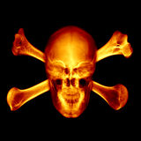 Skull. Fire skull on black background Stock Photos