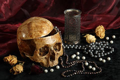 Skull. Of the person on a black background with pearls and dry colours Royalty Free Stock Images