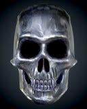 skull Foto de Stock