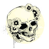 The skull Royalty Free Stock Photo